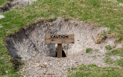 RIR:  NO RABBIT HOLES BUT … WATCH YOUR STEP